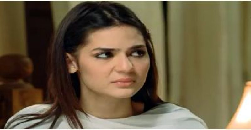 Dhaani Episode 20 in HD