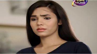 Yaad Teri Anay Lagi Episode 48 in HD