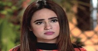 Haya Ke Rang Episode 9 in HD