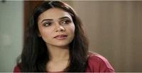 Yaad Teri Anay Lagi Episode 55 in HD