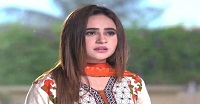 Haya Ke Rang Episode 16 in HD