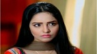 Bechari Mehrunnisa Episode 110 in HD