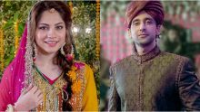 Tere Bina Episode 13 in HD