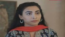 Dil e Majboor Episode 24 in HD