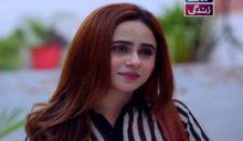 Haya Ke Rang Episode 99 in HD