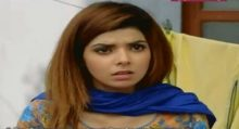 Mirza Aur Shamim Araa episode 23
