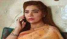 Love in Gulshan e Bihar Episode 7 in HD