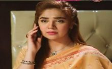Love in Gulshan e Bihar Episode 8 in HD