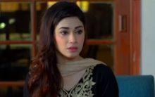 Apnay Paraye Episode 22 in HD