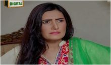 Dilli Walay Dularay Babu Episode 47 in HD