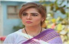 Love in Gulshan e Bihar Episode 23 in HD