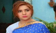 Love in Gulshan e Bihar Episode 24 in HD