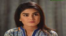 Love in Gulshan e Bihar episode 25