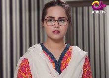 Meherbaan Episode 17 in HD
