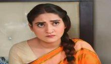 Love in Gulshan e Bihar episode 28