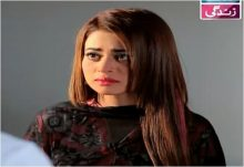 Haal e Dil Episode 221 in HD
