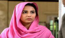 Neelum Kinaray Episode 13 in HD