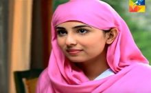 Neelum Kinaray Episode 14 in HD