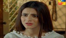 Naseebon Jali Episode 58 in HD