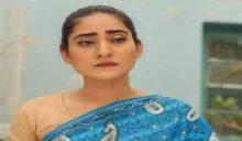 Love in Gulshan e Bihar episode 80