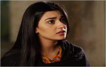 Yaar e Bewafa Episode 24 in HD