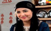 Neelum Kinaray Episode 15 in HD