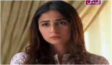 Haya Ke Rang Episode 219 in HD