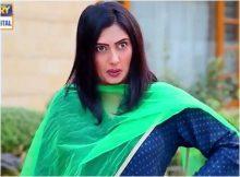 Dilli Walay Dularay Babu Episode 68 in HD