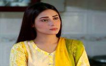 Hina Ki Khushboo Episode 25