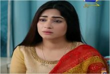Hina Ki Khushboo Episode 28 in HD