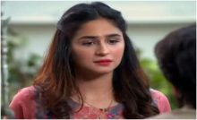 Haya Ke Rang Episode 236 in HD