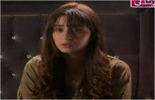 Haya Ke Rang Episode 238 in HD