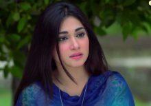Apnay Paraye Episode 68 in HD
