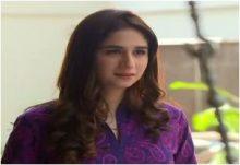 Haya Ke Rang Episode 239 in HD