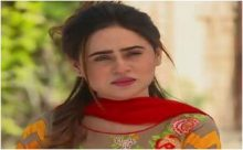 Haya Ke Rang Episode 245 in HD