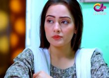 Kambakht Tanno Episode 293 in HD