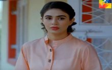 Teri Meri Kahani Episode 9 in HD