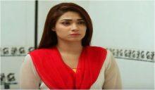 Hina Ki Khushboo Episode 42 in HD