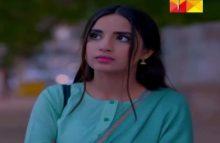 Teri Meri Kahani Episode 11 in HD