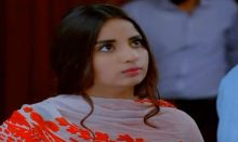 Teri Meri Kahani Episode 17 in HD
