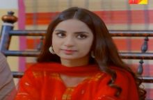 Teri Meri Kahani Episode 19 in HD