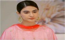 Teri Meri Kahani Episode 20 in HD