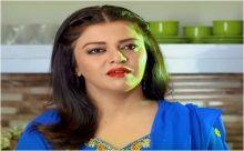 Naik Parveen Episode 25 in HD