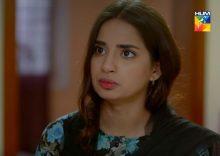 Teri Meri Kahani Episode 28 in HD