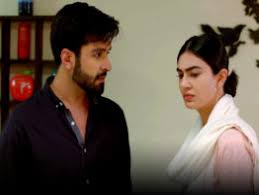 Teri Meri Kahani Episode 29 in HD