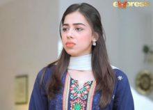 Mohabbat Zindagi Hai Episode 136 in HD