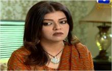 Naik Parveen Episode 37 in HD