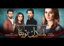Ay Dil Tu Bata Episode 1 - 20 November 2018 On Geo TV Watch Video