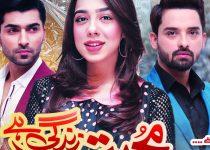Mohabbat Zindagi Hai Episode 321