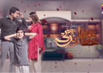 Khafa Khafa Zindagi Episode 19